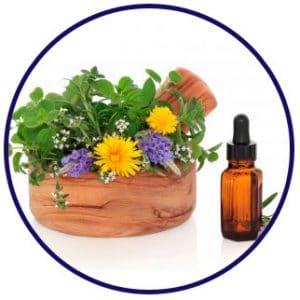 curso boitquin homeopatico